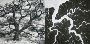 Branching, meandering studies, 2011